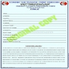 Foreign payment processing form