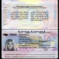 Ukrainian travel pass